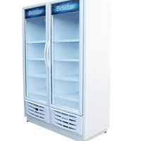 Expositor Visa Cooler Gallant Vertical, 1035 Litros, 2 Portas