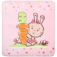 Cobertor Microfibra Coelinha - Baby Joy