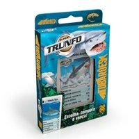 Super Trunfo Tubarões - Grow
