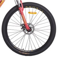 Bicicleta MTB Aro 29 24V Quadro 19 Alumínio Modelo Buffalo Mobele