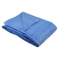 Lona polietileno 12x10m azul 100 micras - Belfix