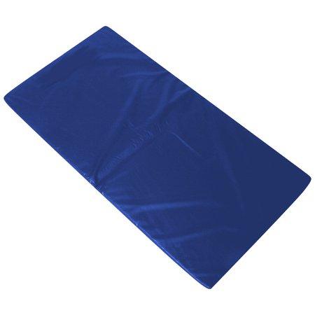Colchonete Academia Fitness Abdominal 90 X 40 X 3 Cm D33 Orthovida- Azul
