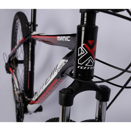 Bicicleta Totem Aro 29